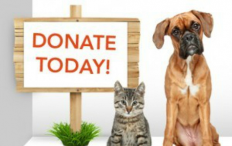 Paws & Claws Pet Food Drive