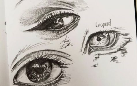 Tips on How to Draw Better
