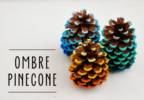 An example of a craft you can make with just some paint and pinecones!