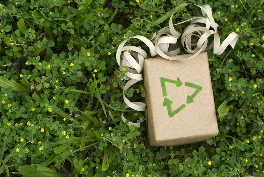 Eco+friendly+gift+wrapped+in+recycled+paper+surround+by+green+plants